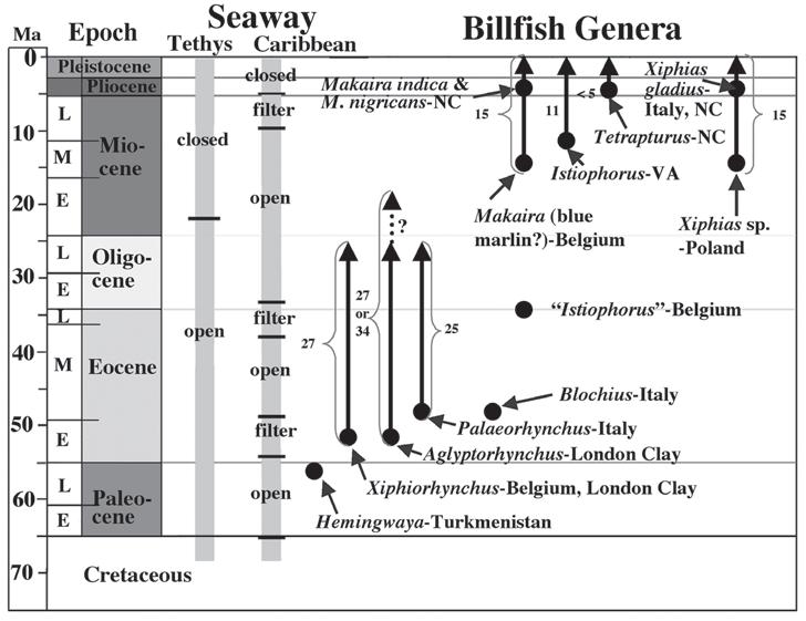 geologic-timescale-2