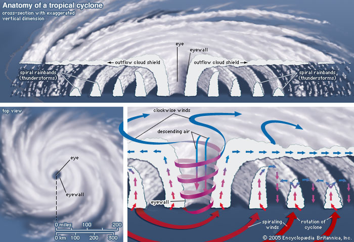 hurricane-cross-section