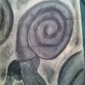 """Ammonites"""