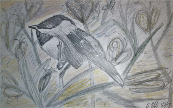 """Chickadee on Branches"""