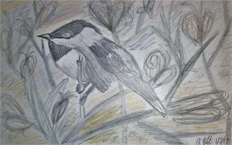 """Chickadee on Branches"""