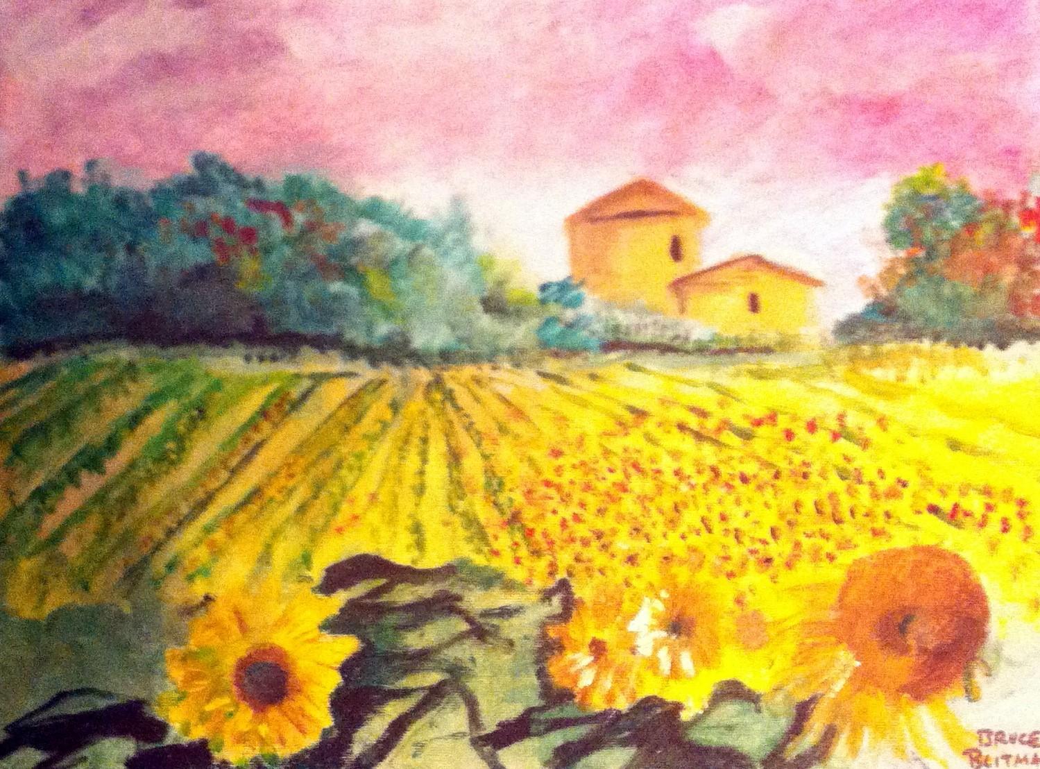 sunflower-field-by-bruce-blitman