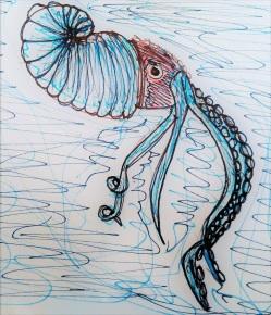 Andrew's Paper Nautilus