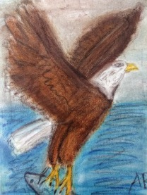 Bald Eagle in Flight (Pastel Version) - 11x14