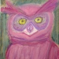 Magenta Owl –11×14