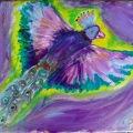 Peacock in Flight –11×14